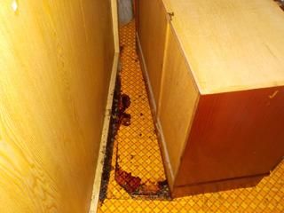 食器棚の裏