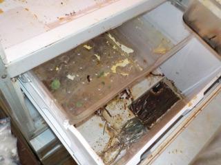 冷蔵庫のビフォア