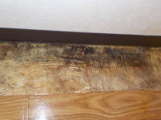 クッションフロアー撤去後の床