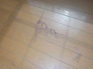 床洗浄のビフォア