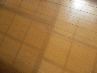 床洗浄のアフター