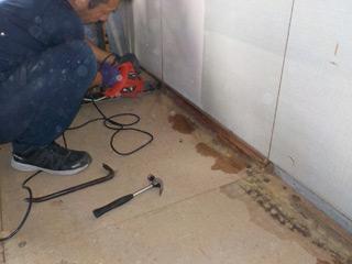 床材に付着した体液
