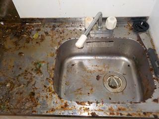 キッチンシンク不要物撤去後のビフォア